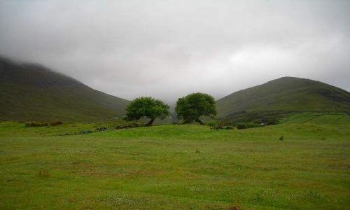 Zdjęcie IRLANDIA / Hranstwo Galway / Connemara / Hobbiton