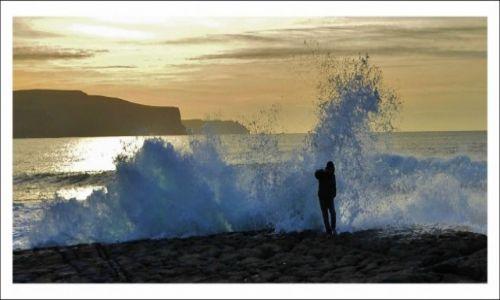 Zdjecie IRLANDIA / Burren / Port Doolin / Niechciany gosc
