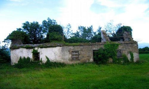 Zdjęcie IRLANDIA / Hrabstwo Limerick / Newtown / Ruiny domu w Newtown