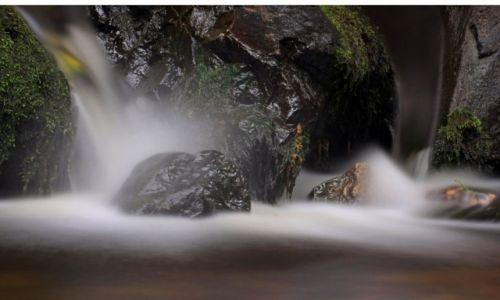 Zdjęcie IRLANDIA / County Down / Rostrevor / Strumyk