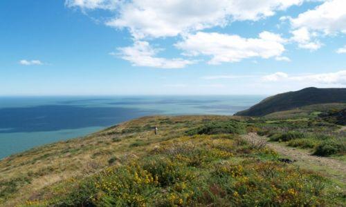 Zdjęcie IRLANDIA / Wicklow / Bray / Ogrom natury