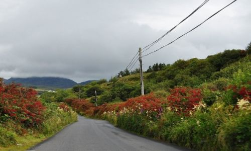 Zdjecie IRLANDIA / Pd Irlandia / Pd Irlandia / Drogi Irlandii
