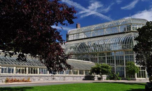 Zdjecie IRLANDIA / Dublin / Dublin / W Ogrodzie Botanicznym