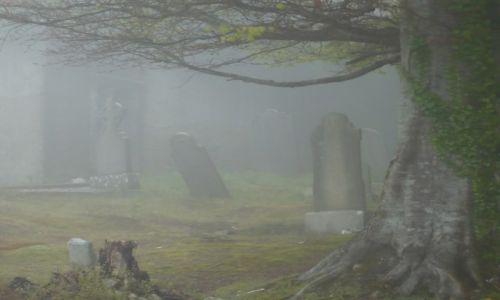 Zdjęcie IRLANDIA / Dublin / Dublin / Cmentarz we mgle