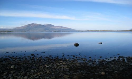 IRLANDIA / Park Narodowy Killarney / nad brzegiem Muckross Lake / Park Narodowy