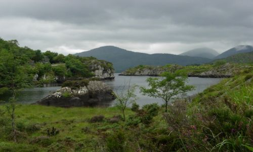 Zdjecie IRLANDIA / hrabstwo Kerry / Killarney National Park / My Irish realit