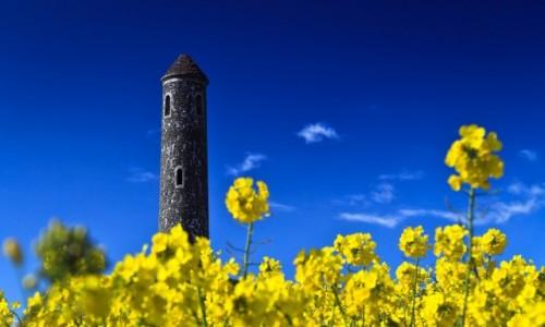 Zdjęcie IRLANDIA / Dublin / Portraine / Tower