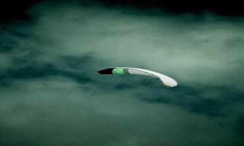 Zdjecie IRLANDIA / County Kerry / Inch / wiatr