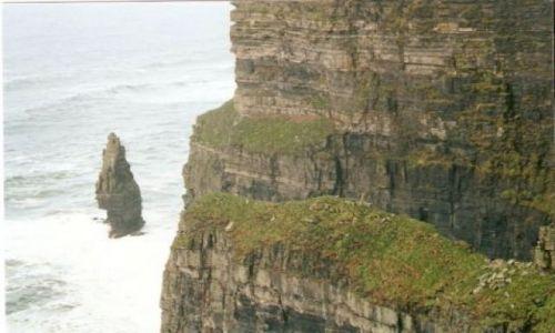 Zdjecie IRLANDIA / brak / klify / the Cliffs