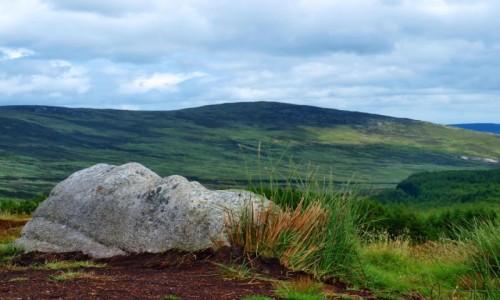 Zdjecie IRLANDIA / Hrabstwo Wicklow / Góry Wicklow / w górach Wicklow