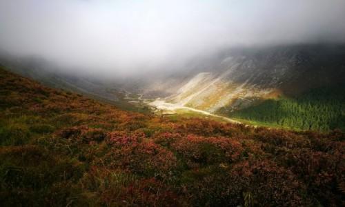 Zdjecie IRLANDIA / Wicklow / Glendalough / Pod chmurami