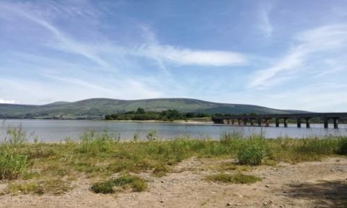 Zdjecie IRLANDIA / Co.Kildare / Blessington / Blessington Lake