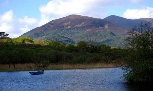 Zdjęcie IRLANDIA / KERRY / RING OF KERRY - ROSS / Góry