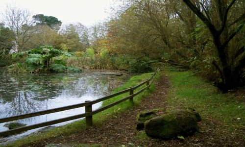 Zdjecie IRLANDIA / CO. LIMERICK / BUNRATTY / irlandzkie klimaty