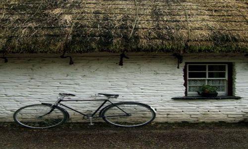 Zdjęcie IRLANDIA / brak / bunratty / irlandzkie klimaty