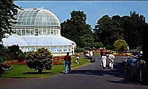 IRLANDIA / brak / Belfast / Ogród botaniczny w Belfaście