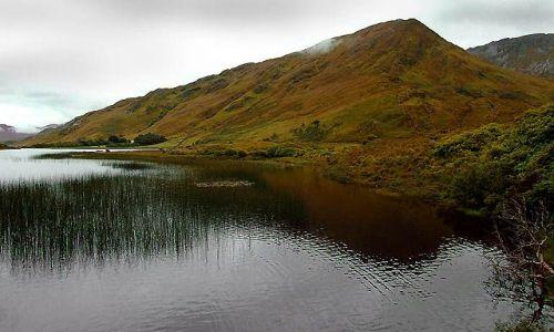 Zdjęcie IRLANDIA / Connemara / Park Narodowy Connemara / connemara
