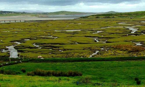 Zdjęcie IRLANDIA / brak / Donegal / tereny zalewowe