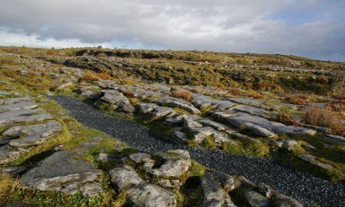 Zdjęcie IRLANDIA / zachodnie wybrzeże / irlandia / The Burren
