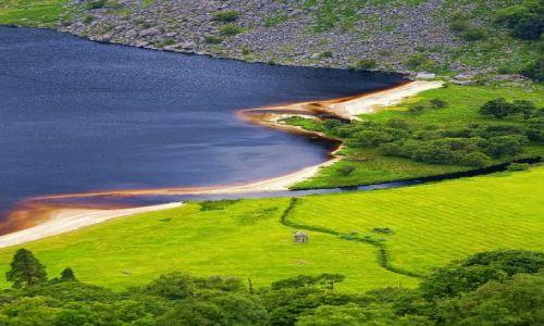 Zdjęcie IRLANDIA / Góry Wicklow / Lough tay / Lough tay