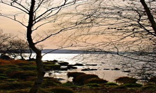 Zdjęcie IRLANDIA / Galway / Portumna  / Lough Derg