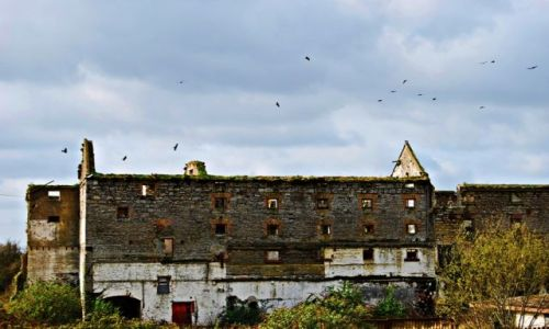 Zdjecie IRLANDIA / Offaly  / Banagher / Ruiny