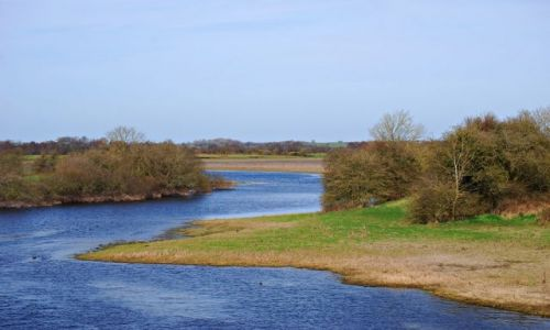 Zdjecie IRLANDIA / Offaly / Shannonbridge  / Rzeka Shannon