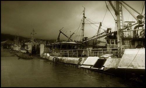 Zdjecie IRLANDIA / Kerry, półwysep Dingle / miasteczko Dingle / stare kutry rybackie