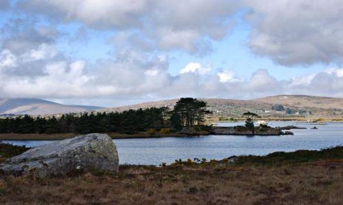 Zdjecie IRLANDIA / co Galway / Park narodowy Connemara / Connemara