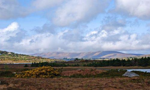 Zdjecie IRLANDIA / co Galway / Park narodowy Connemara / Connemara cd :)