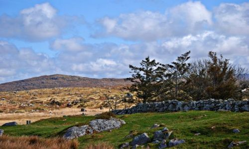 Zdjecie IRLANDIA / co Galway / Park Narodowy Connemara  / Kamienne murki