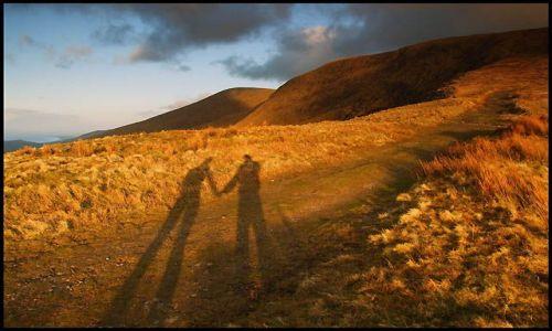 Zdjęcie IRLANDIA / półwysep Dingle, co.Kerry / Conor Pass / futrzaki o zachodzie słońca