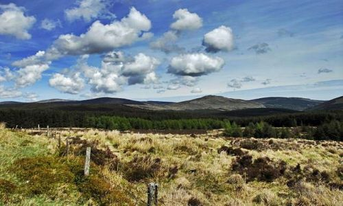 Zdjecie IRLANDIA / Glendalough / Glendalough / w drodze (ma�a