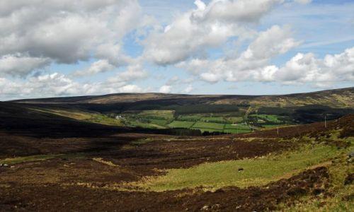 Zdjęcie IRLANDIA / Wicklow / gory / okolice