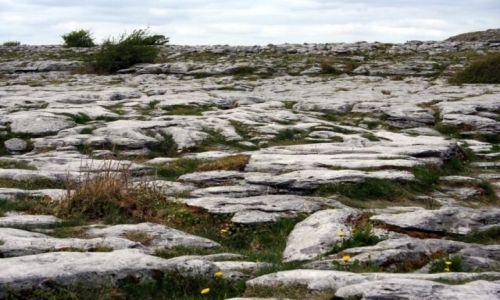 Zdjecie IRLANDIA / Burren / Clare / Kamień na kamieniu.