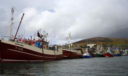 Zdjęcie IRLANDIA / hrabstwo Kerry / Dingle / Port w Dingle