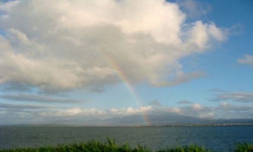 Zdjęcie IRLANDIA /   / półwysep Dingle / Droga do nieba