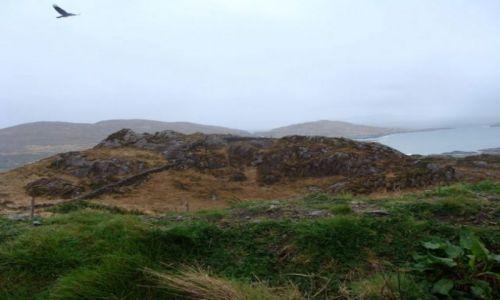 IRLANDIA / hrabstwo Kerry / Irlandia / Przy drodze N70