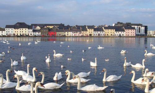 Zdjęcie IRLANDIA / Connacht / Galway / Spanish Arch