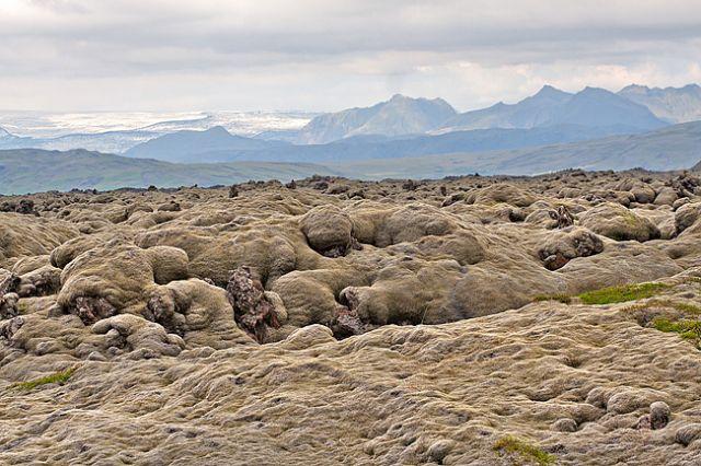 Zdjęcia: Islandia, Isandzkie mchy, ISLANDIA
