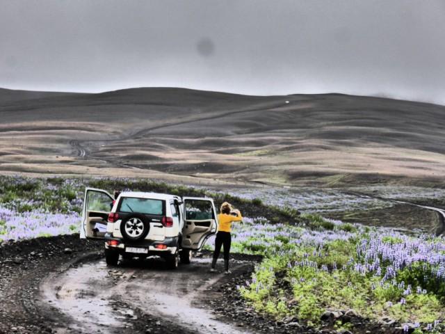 Zdjęcia: Islandia, Islandia, Off Road w Interiorze, ISLANDIA