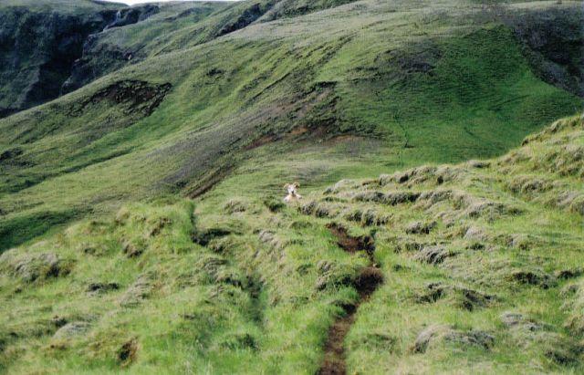 Zdjęcia: horgsland, potwór z gór, ISLANDIA