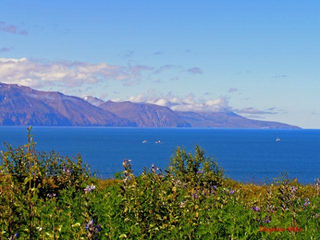 Zdjęcia: Husavik, Polnocna Islandia, Panorama, ISLANDIA