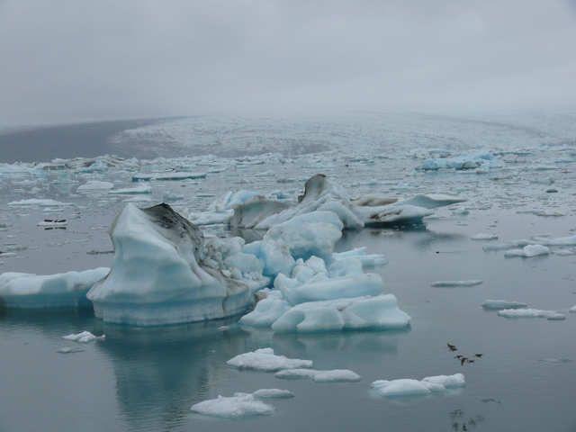 Zdjęcia: Jokulsarlon - Lodowa laguna, Południowa Islandia, Laguna usłana lodem, ISLANDIA