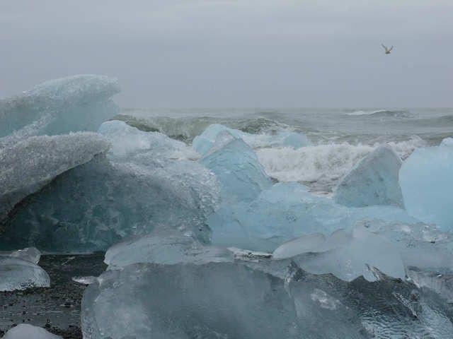 Zdj�cia: Uj�cie rzeki Jokulsa a Breidamerkursandi, Po�udniowa Islandia, Pla�a nad oceanem , ISLANDIA