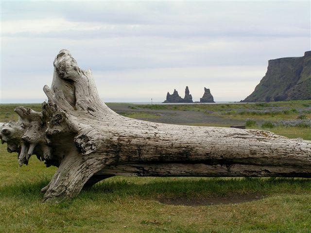 Zdjęcia: VIK, Islandia - Vik, ISLANDIA