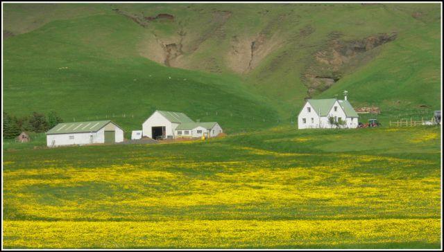 Zdjęcia: Miedzy Skogar a Vik, Islandia poludiowa, Malownicza kraina, ISLANDIA