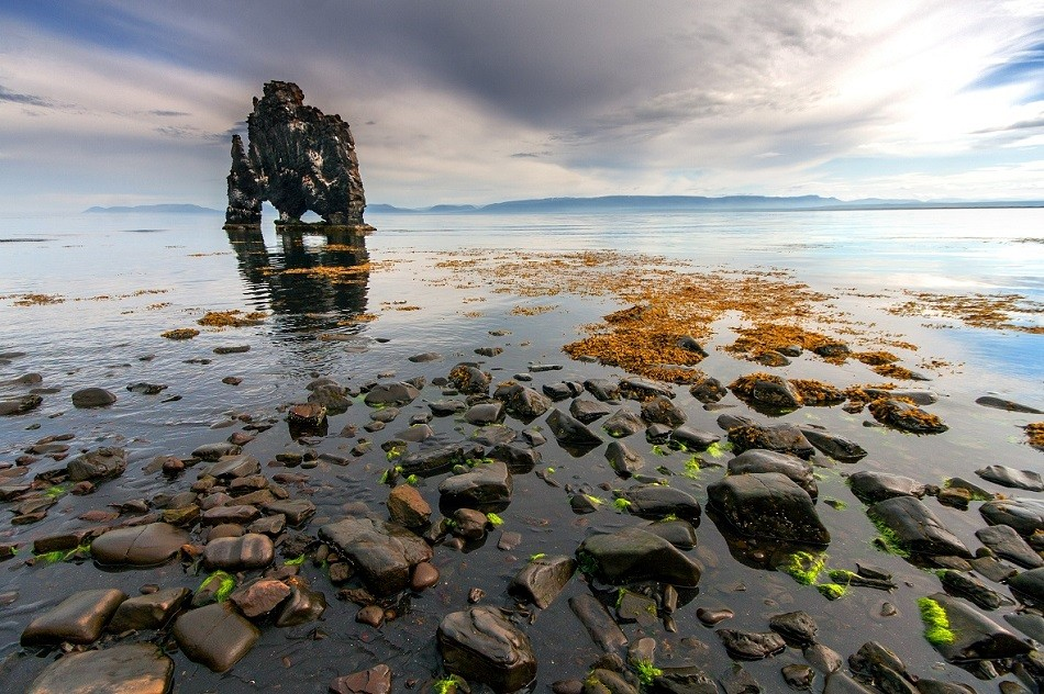 Zdjęcia: Hvitserkur , Skagafjörður-Sysla, Hvitserkur , ISLANDIA