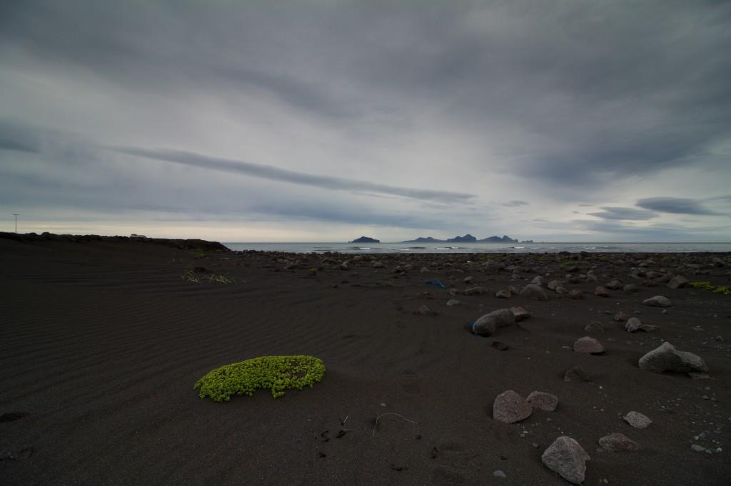 Zdjęcia: Isandia południowa, Isandia południowa, plaża, ISLANDIA
