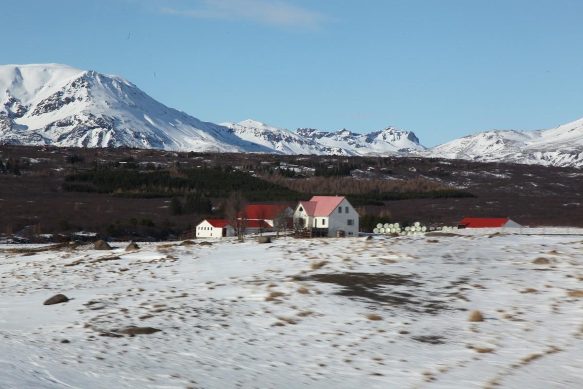 Zdjęcia: ., Thingvellir , Farma wśród śniegów, ISLANDIA